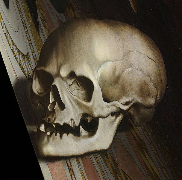 Skull from The Ambassadors, viewed from an extreme angle.