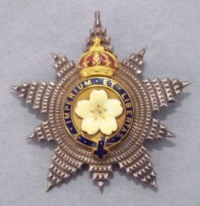 Primrose League Bling: sparkler for 'outstanding contributions'. Thank you, thehigginsbedfordcollections.blogspot.com